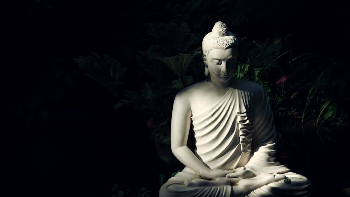 The History of Buddhism 2