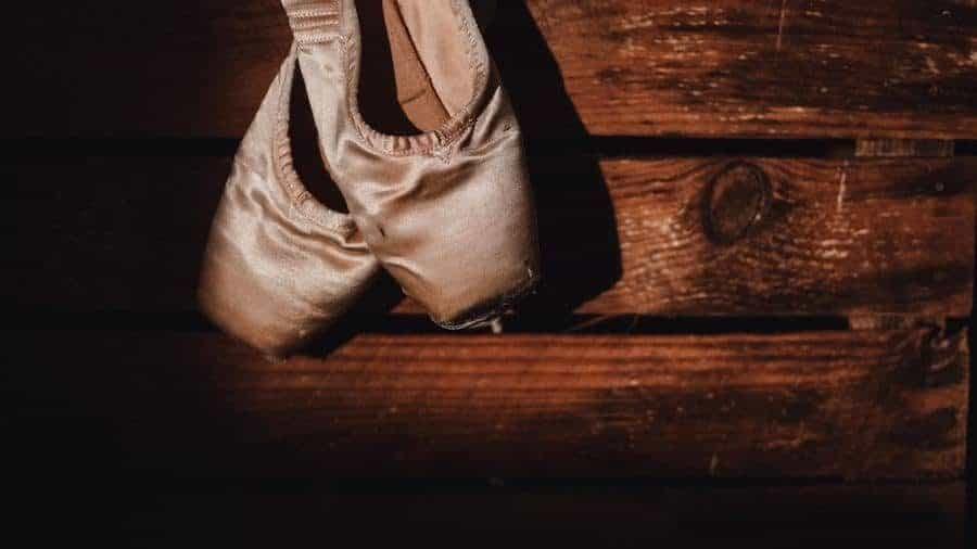 The Pointe Shoe, A History 5