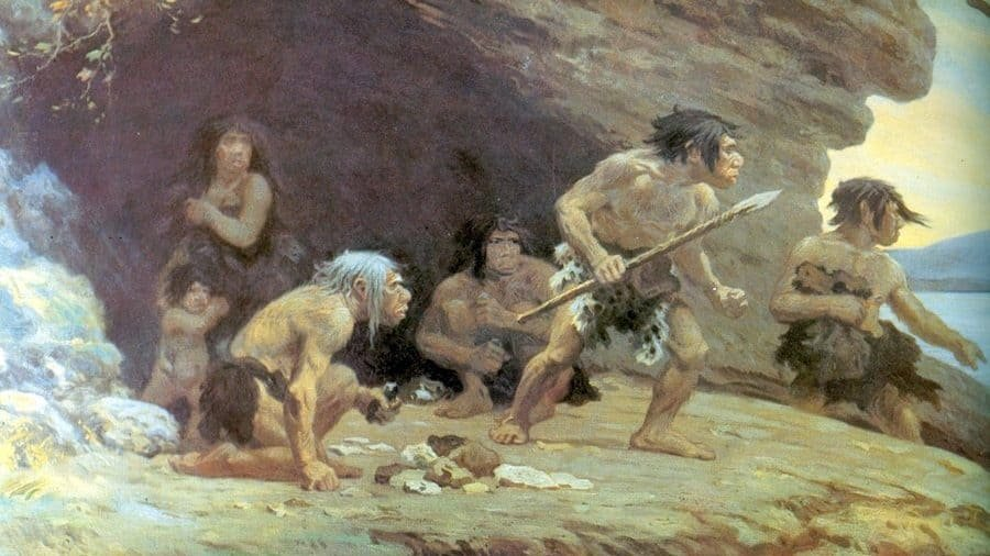 Early Humans 6