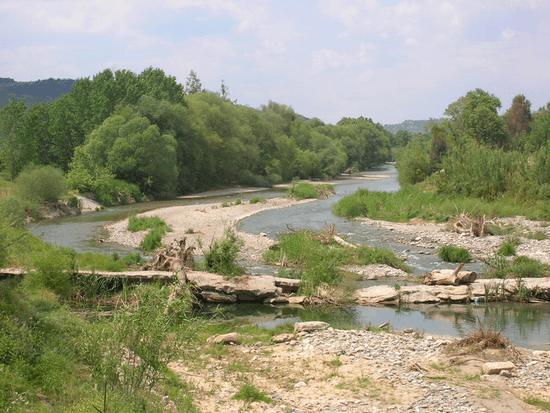 Eurotas river