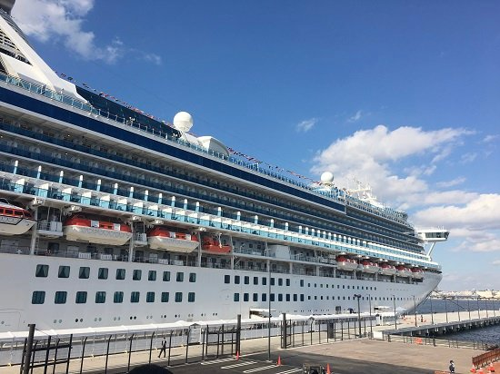 A picture of the Diamond Princess cruiser ship moored in the docks.